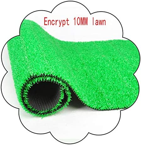 XEWNEG 10ミリメートルグリーン人工ターフ、ペットカーペットマットは、ガーデンバルコニーの壁のための店の装飾、幅2メートル、防水ノンスリップアンチ涙を暗号化 (Size : 2x7M)