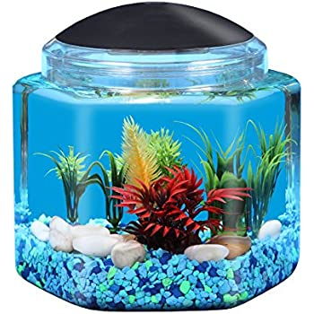 Tetra led half moon betta aquarium 1 1 for 2 gallon betta fish tank