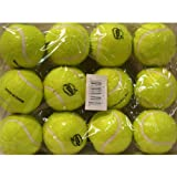 SKY BOUNCE BALL TENNIS BULK (12PK)