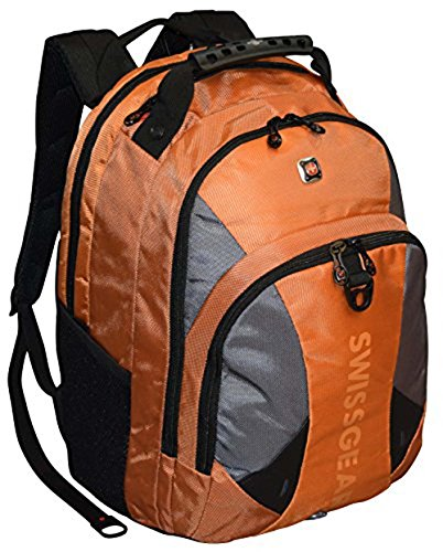 SwissGear%C2%AE Pulsar Padded Laptop Backpack