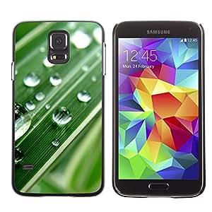 LECELL -- Funda protectora / Cubierta / Piel For Samsung Galaxy S5 SM-G900 -- Green Water Drop Macro Leaf --
