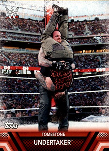 2017 Topps WWE Then Now Forever Finishers and Signature Moves #F11 Undertaker]()