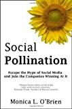 Social Pollination: Escape the Hype of Social Media and Join the Companies Winning At It, Monica L. O'Brien, 0984234802