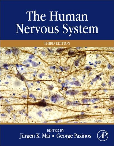 Download The Human Nervous System Pdf