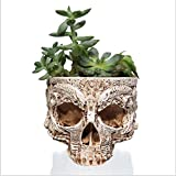 Cheap fannuoyi Skull Flowerpot Succulent Skeleton Planter Resin Craft Flower Container Garden Home Bar Decoration Ornament