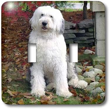 3drose Lsp 1070 2 Old English Sheepdog Double Toggle Switch Switch Plates Amazon Com