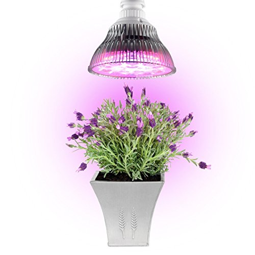 Banwen E27 24W LED Plant Grow Lights Bulb for Hydroponic Garden Greenhouse Indoor Plants Seedlings - 4 blue & 8 red