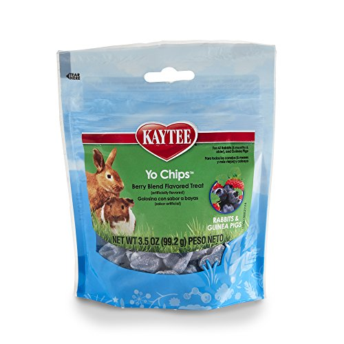 51%2BW4hJCIYL - Kaytee Mixed Berry Flavor Yogurt Chips for Rabbit and Guinea Pig, 3.5-oz bag