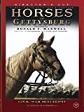 Horses of Gettysburg - Civil War Minutes IV Volume One