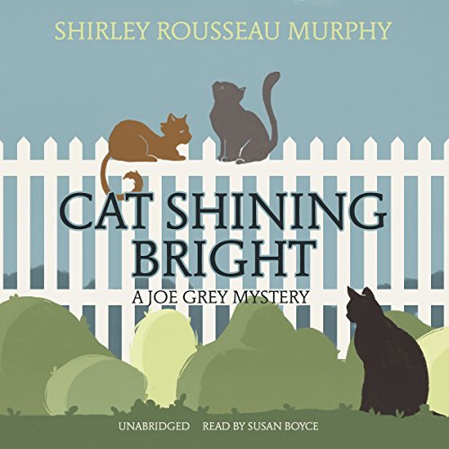 Bargain Audio Book - Cat Shining Bright