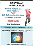 Xingyiquan Instruction - The 5 Fist Postures plus Fighting Applications