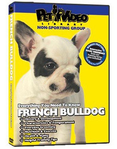 french-bulldog-dvd-dog-puppy-training-bonus-doggydvd