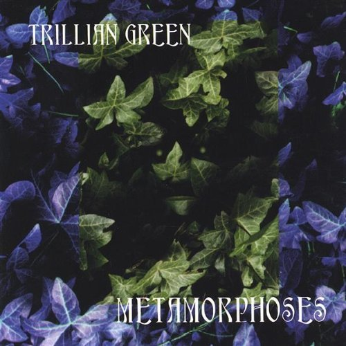 Price comparison product image Metamorphoses by Trillian Green (2004-03-24)