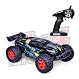 Best 1 10 Scale Rtr Rc Trucks - Demaxis 30 mph Fast RC Monster Truck 4wd Review