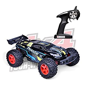 Demaxis 30 mph Fast RC Monster Truck 4wd Off Road, Electric RTR Radio Controlled Race Car Dune Buggy 4x4 Offroad for Adults, 2.4 g Remote Control Vehicle Truggy High Speed (1/12, 2 Batteries)
