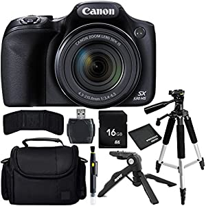 Canon PowerShot SX530 HS Digital Camera Bundle with Carrying Case and Accessory Kit (9 Items)