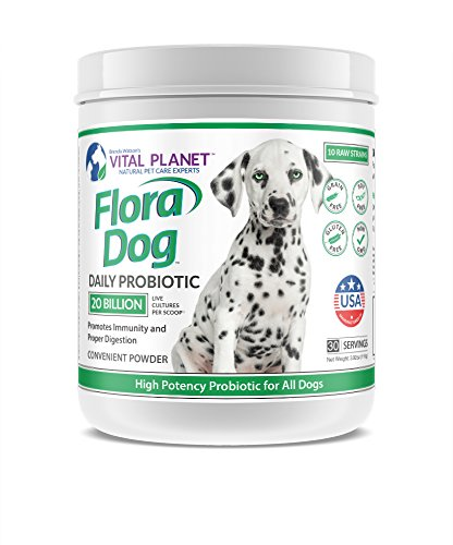 Cheapest Vital Planet - Flora Dog - High Potency, Multi Strain Probiotic formuls for Dogs - 3.92 Ounces 30 Servings Check this out.