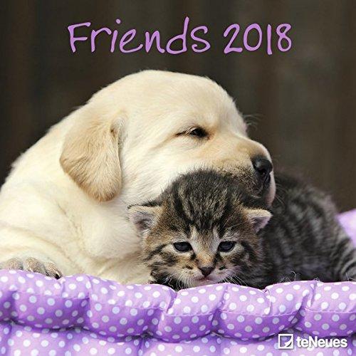 Friends 2018 - Tierkalender, Broschürenkalender, Wandkalender - 30 x 30 cm