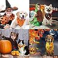 JUSTDOLIFE 3PCS Halloween Pet Bandana Decorative Pet Bib Triangle Bandana Bib for Cats Dogs