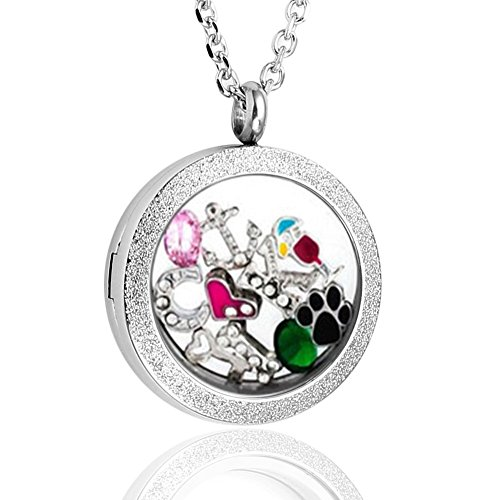 Zysta 25MM 316 Stainless Steel Silver Matte Round Living Floating Charm Memory Locket Pendant Necklace with 22 Inches Chain