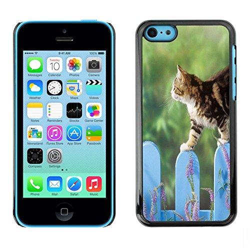 TopCaseStore / caoutchouc Hard Case Housse de protection la Peau - Cat Fence Cute Pet Nature Home Green - Apple iPhone 5C