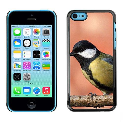 Premio Sottile Slim Cassa Custodia Case Cover Shell // F00012851 oiseau // Apple iPhone 5C