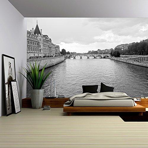 Seine River and Old Bridge in Paris