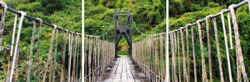 Цвет: веревочный мост