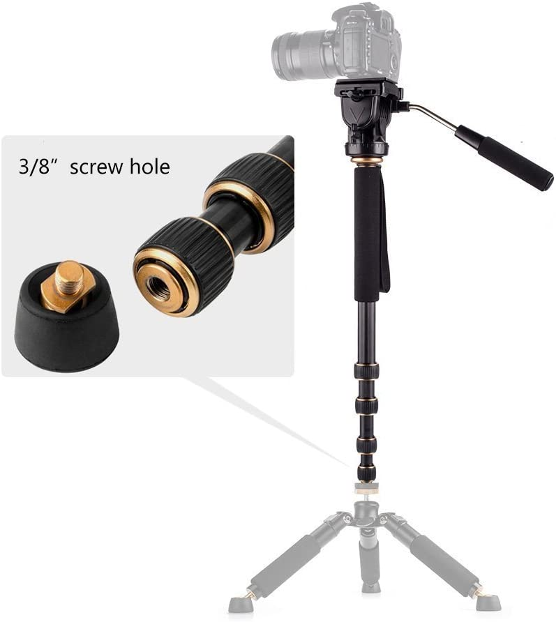 Morjava MJ-188C Carbon Fiber Monopod 5-Sections 560mm-1640mm Load 8KG with Pan Pan Tilt Head Quick Release Plate for Canon Nikon Sony DSLR Cameras Video Phone Shooting