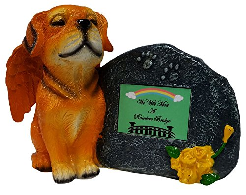 Rainbow Bridge Gold Angel Dog Memorial Statue with Tribute Plate and Keepsake Box for Ashes by Imprints Plus (2010 gld-mgrn)