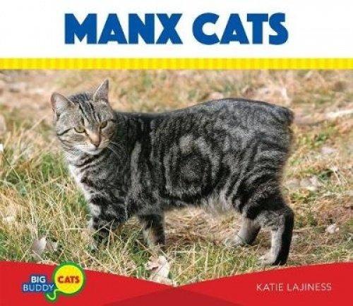 Read Online Manx Cats (Big Buddy Cats) pdf