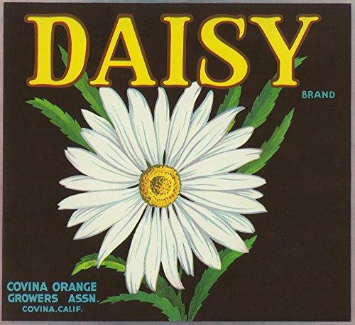 Daisy Brand Citrus Crate Label - Covina, CA (12x18 SIGNED Print Master Art Print w/ Certificate of Authenticity - Wall Decor Travel - W Covina