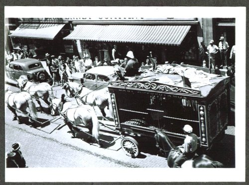 Hippo Wagon - 5