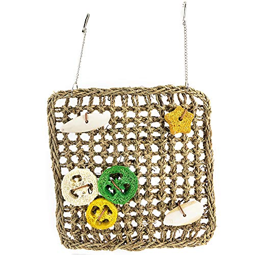 Bird Foraging Wall Climbing Toy Seagrass Woven Mat Parrot Chew Toys with Cuttlefish bone, Loofah, Grindstone for Medium and Large Parrots, Sun Conures, Caique, Cockatoo, African Grey, Macaws, Amazon