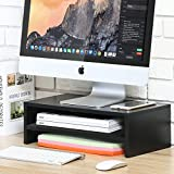 Fitueyes Computer Monitor Stand TV Shelf Risers 16.7 inch 2 Tiers Monitor Stand Save Space Black