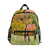 AGSDON Kids' Backpacks