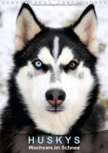 Huskys – Wachsam im Schnee (Wandkalender 2014 DIN A4 hoch): Die Langstreckenläufer (Monatskalender, 14 Seiten)