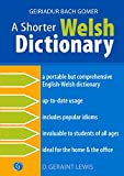 A Shorter Welsh Dictionary, Lewis, D. Geraint, 1843230992
