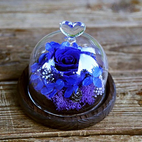 103 Petal (New Kit Gift , Red Magic Rose With Fallen Petals In Beautiful Glass Cover Above Wooden Base Snow White Handmade Enchanted Rose In Glass Dome Bell DIY Hand-made , #103)