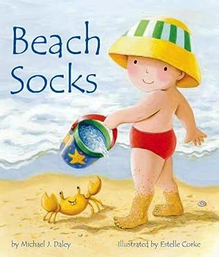 book cover of Beach Socks
