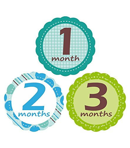 'MuchMore' Baby Monthly Stickers for Boy, Bodysuit Stickers ,Onesie Stickers Great Shower Gift Excellent Baby Photo Props #7002