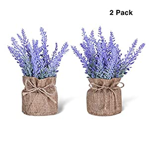 chuangxindaye Artificial Mini Potted Flowers Plant Lavender for Home Decor Party Wedding Garden Office Patio Decoration (Linen 2set)