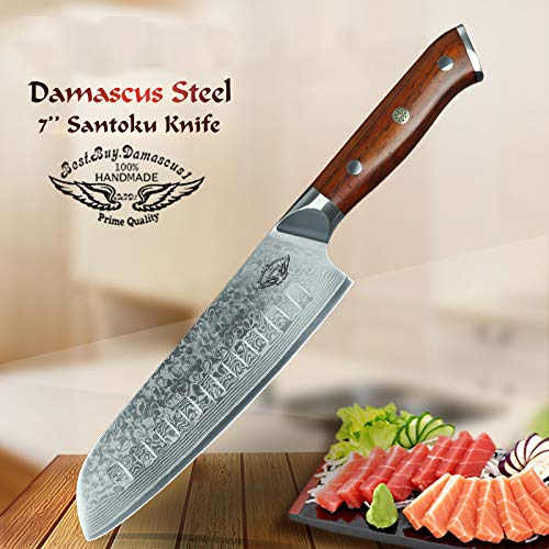 (BBD1-C13 santoku knife, Japanese VG10 Damascus Steel 210MM Santoku Professional Chef's Knife Hammered Finish with Rosewood Handle - Series)