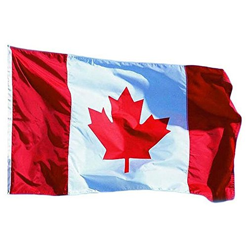 Aiyani 3x5 Foot Canada Flag - Vivid Color Canadian National Flags Polyester with Brass Grommets 3 x 5 Ft (Pack of 2)