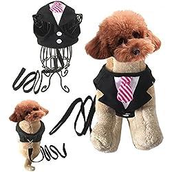 Pet Adjustable Soft Mesh Bowtie Gentleman Dog Suit+Leash (M)