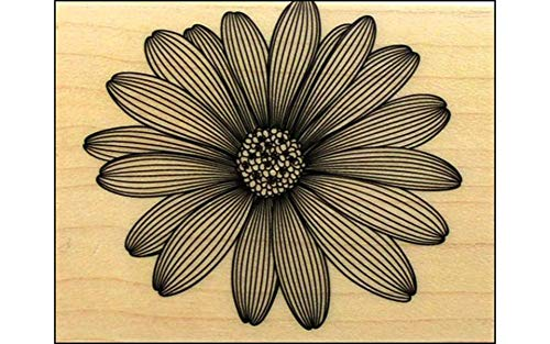 Hero Arts Etched Daisy Woodblock Rubber ()