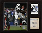 NFL Darrelle Revis New York Jets Player Plaque