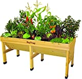VegTrug Medium Raised Bed Planter
