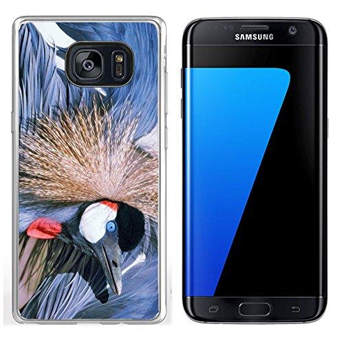 301 Crane - Luxlady Samsung Galaxy S7 Edge Clear case Soft TPU Rubber Silicone IMAGE ID 5606775 African Grey Crowned Crane Balearica regulorum