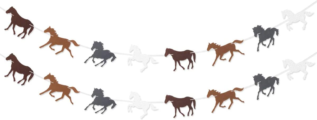 Amazon.com: Horse Garland Banner for Kentukey Derby Horse Race ...